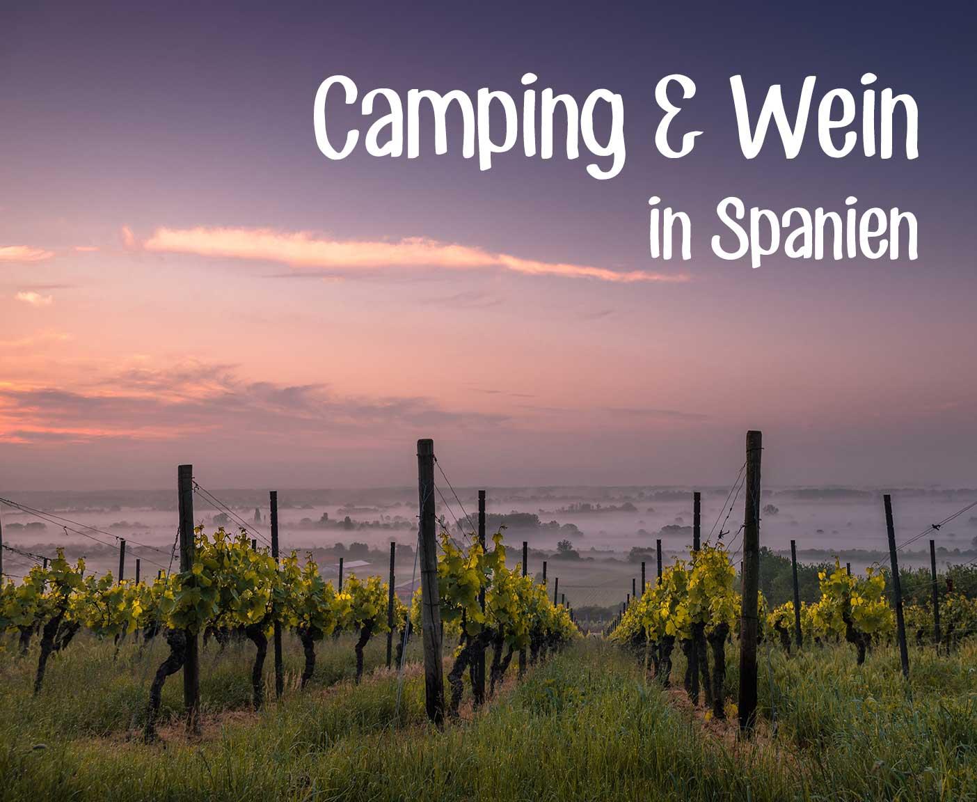 Weingut Weinhang im Sonnenuntergang Weinreben Camping und Wein in Spanien
