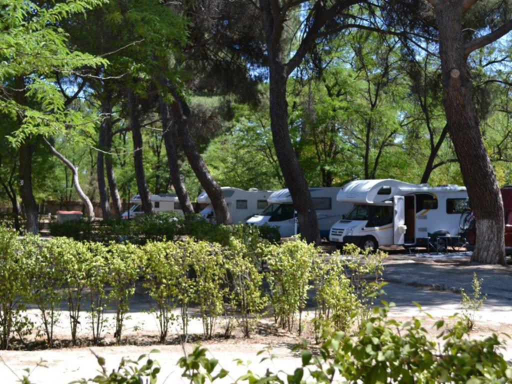 Champions League Finale 2019 Camping Osuna Madrid