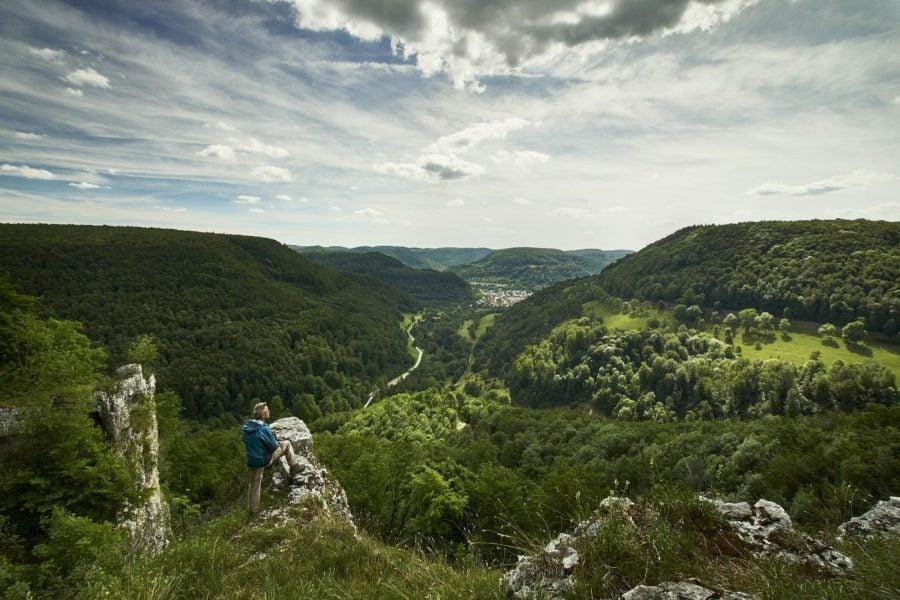 Bild Auszeit in der Natur: Die 5 schönsten Wälder in Deutschland