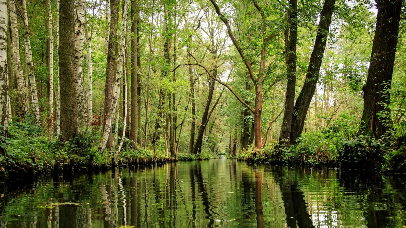Spreewald Florida in Deutschland