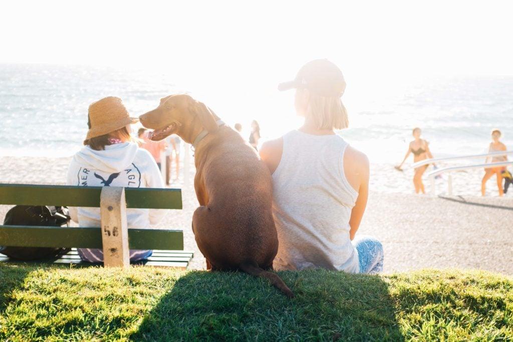 Urlaub mit Hund am Meer - Herrchen und Hund