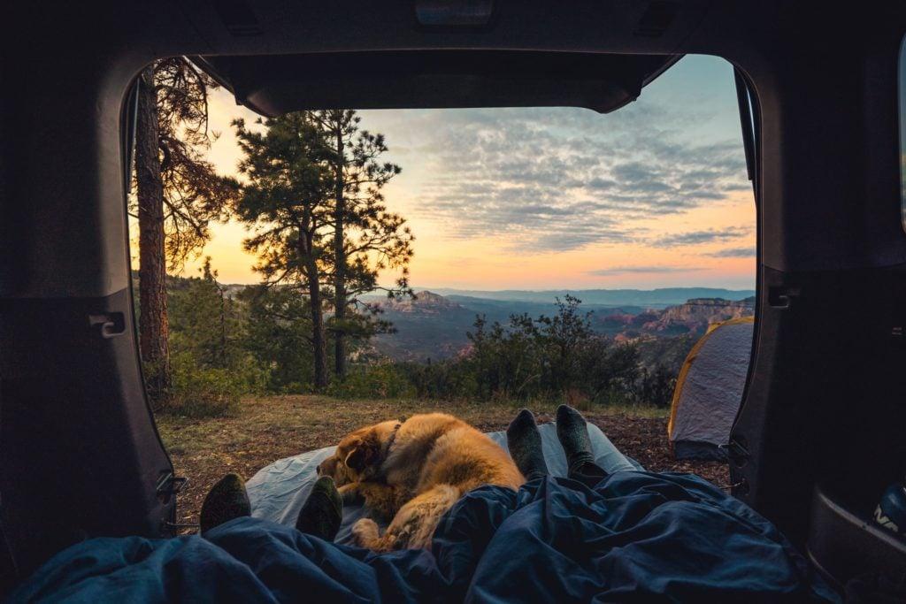 Camper-Urlaub mit dem Hund in Bayern