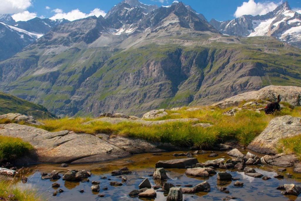 zermatt Zwitserland camper vakantie hergst