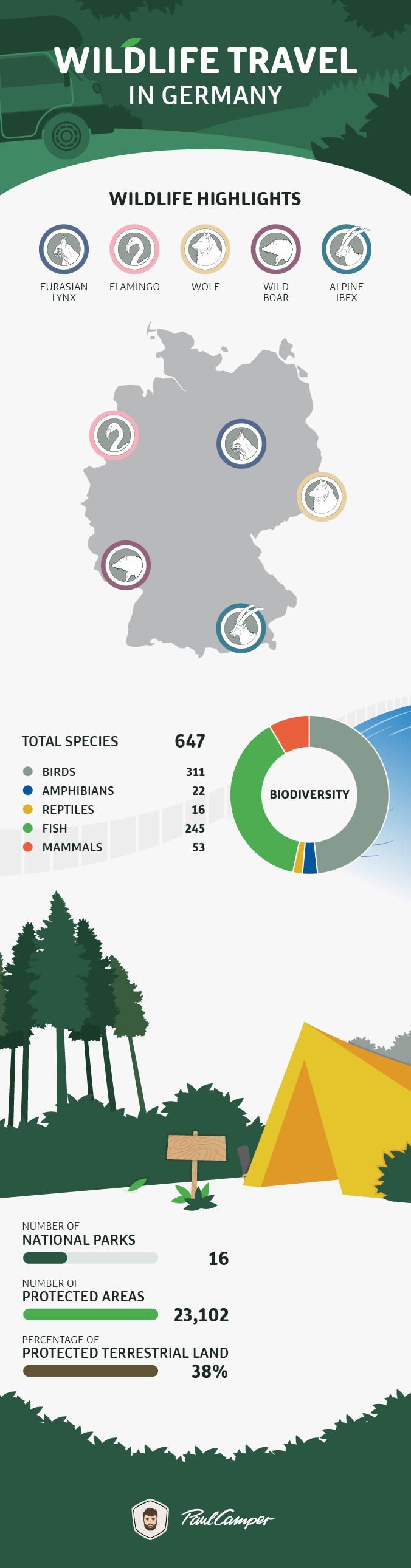 infographic wildlife germany