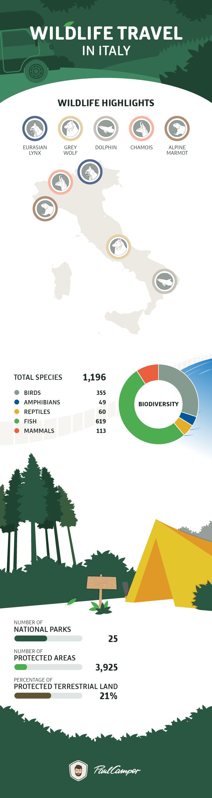infographic wildlife italy