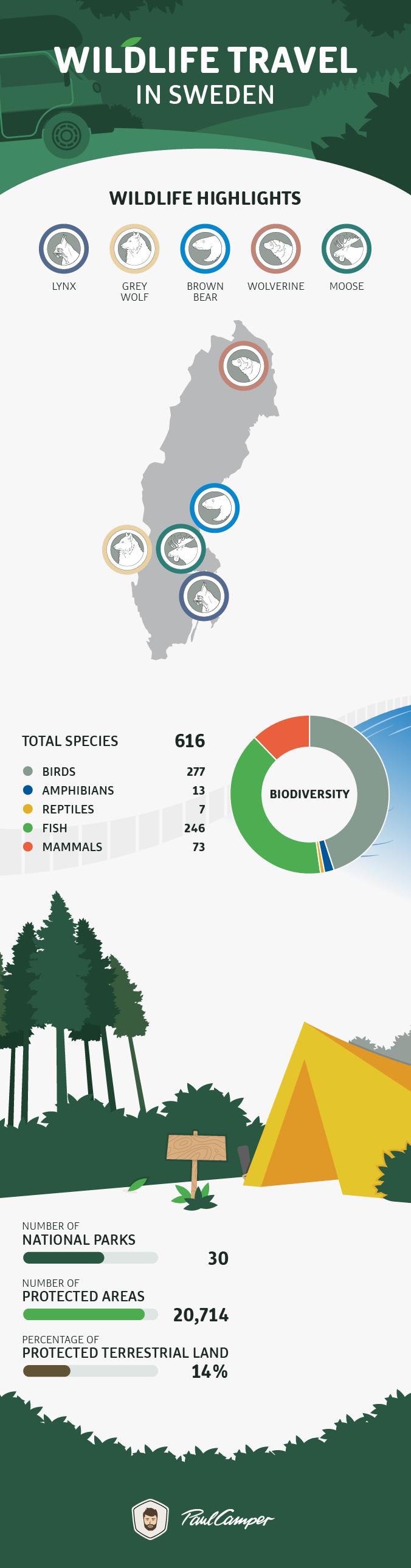 infographic wildlife sweden