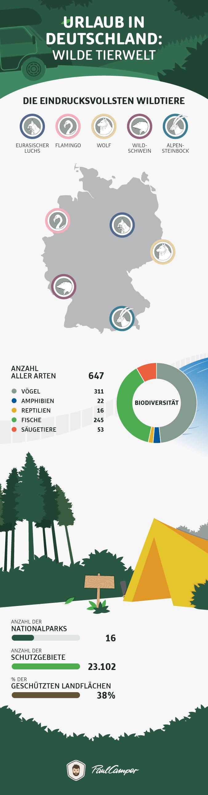 wilde tierweld infographic deutschland